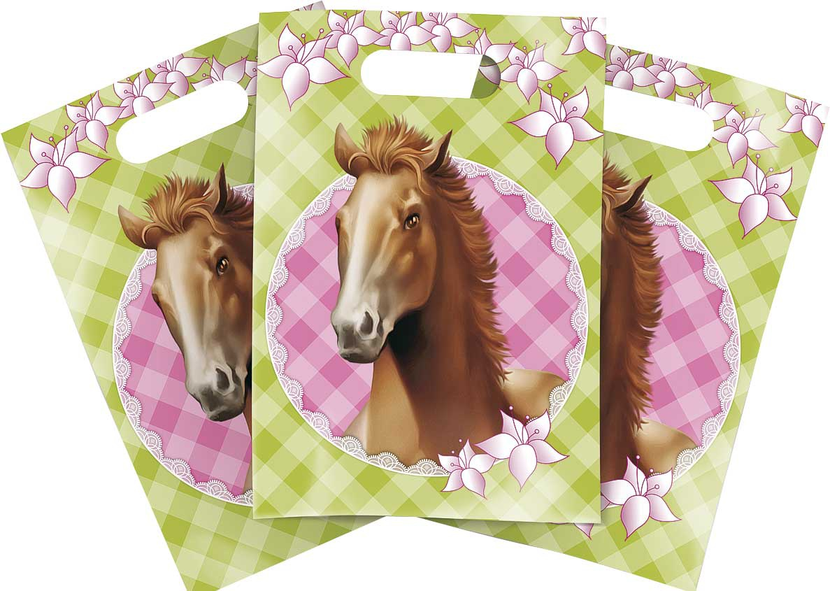 PARTYBAGS PAARDEN